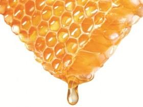 sap ong thien nhien